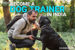 become a dog trainer in india
